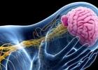 4 أعراض تصيب فروة الرأس بسبب حرارة الجو