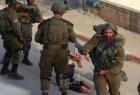 الخليل: إصابات جراء اعتداء المستوطنين وجيش الاحتلال يعتقل شقيقين