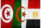 """توافق مصري جزائري """"نحو الدعم الكامل"""" للرئيس التونسي"""