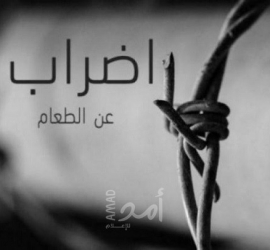 (14) أسيراً يواصلون اضرابهم عن الطعام في سجون الاحتلال