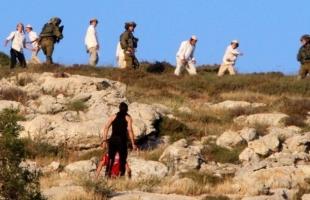 الخليل: مستوطنون يعتدون على مزارعين وناشط في مسافر يطا
