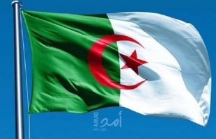 بالفيديو.. كيف بدأت أزمة فرنسا والجزائر؟.. والتداعيات السياسية