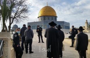"""القدس: مستوطنون يقتجمون ساحات """"الأقصى"""" بحراسة مشددة"""