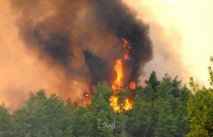 رجال الإطفاء يواصلون إخماد حرائق الغابات في جزيرة صقلية