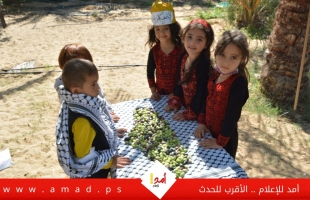 إحياءًا للتراث.. أطفال يشاركون الفلاح الفلسطيني قطف ثمار الزيتون - فيديو
