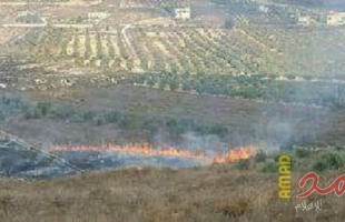 مستوطنون يضرمون النار بمحاصيل زراعية ويمنعون المواطنين من إخمادها شرق يطا