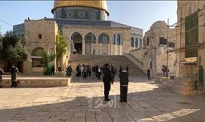 86 مستوطناً يقتحمون الأقصى بحراسة مشددة من شرطة الاحتلال