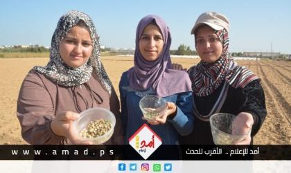 فيديو - شاهد كيف تغلبت فتيات من غزة على مشكلة البطالة
