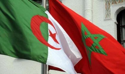 ذهبية للمغرب وبرونزية لتونس.. حصاد العرب يرتفع لـ36 ميدالية