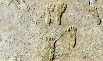 آثار أقدام  تكشف مفاجآت عن الأمريكتين