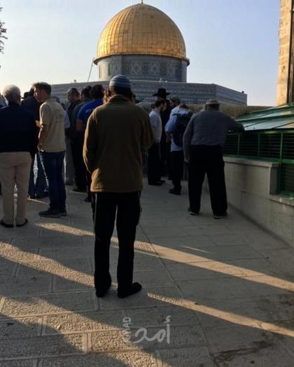 88 مستوطنا يقتحمون المسجد الأقصى بحراسة شرطة الاحتلال