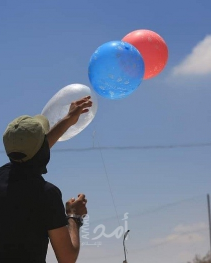 """إعلام عبري: اندلاع حريق في """"إشكول"""" يشتبه بأنه بفعل بالونات حارقة أطلقت من غزة"""